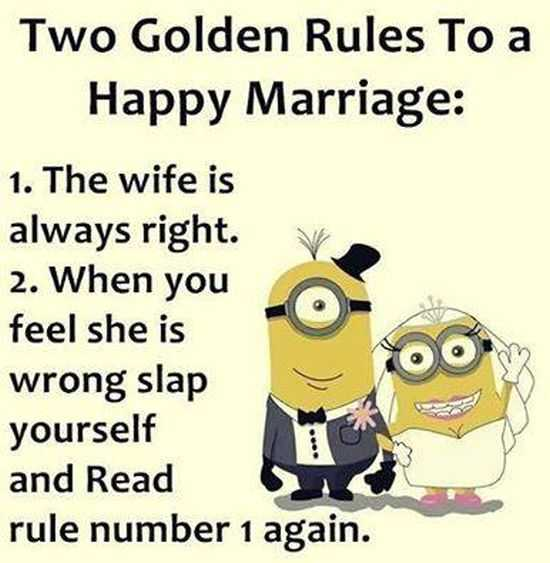 New Funny Minion Pictures And Quotes 020