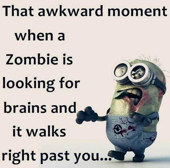 New Funny Minion Pictures And Quotes 029