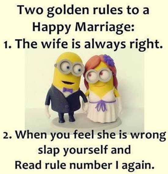 Wedding Quotes Funny Wishes: The Best Minion Pictures Of The Week