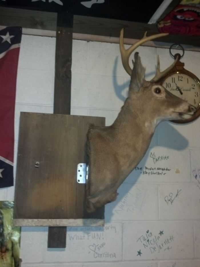 How Build A Hidden Compartment Into Your Deer Shoulder Mount pictures 013