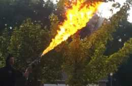Man Uses A Flamethrower To Destroy A Huge Hornet's Nest featured