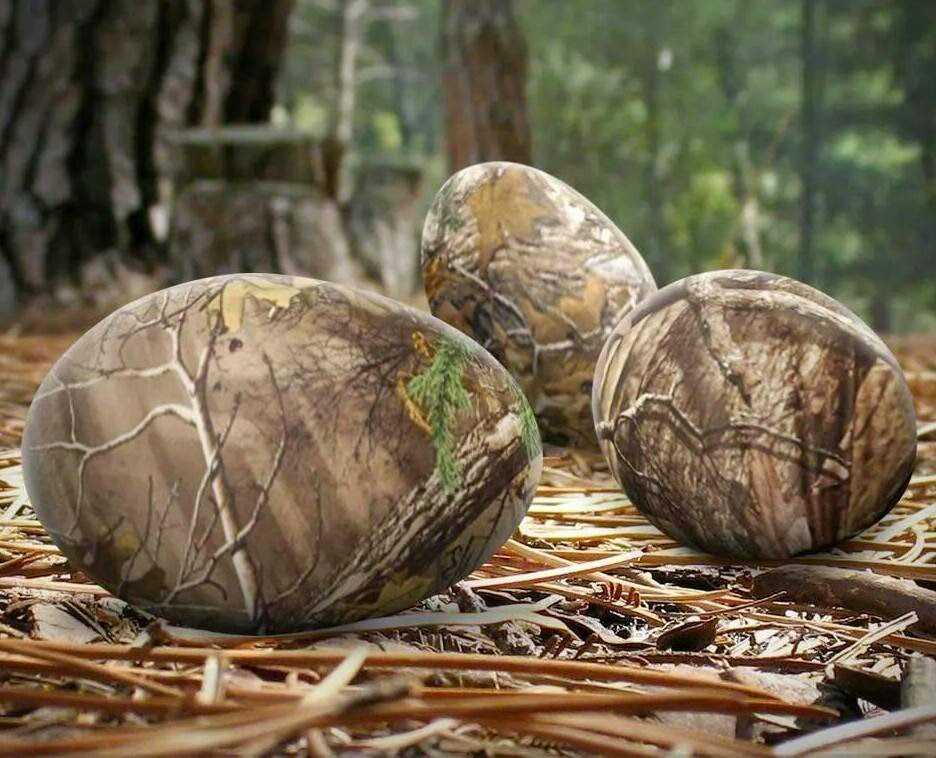 How To Make Camouflage Easter Eggs With Dye featured
