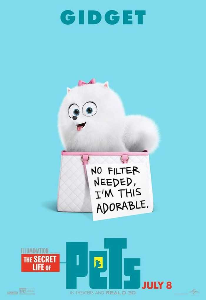The Secret Life Of Pets - Funny Pictures And Quotes 004