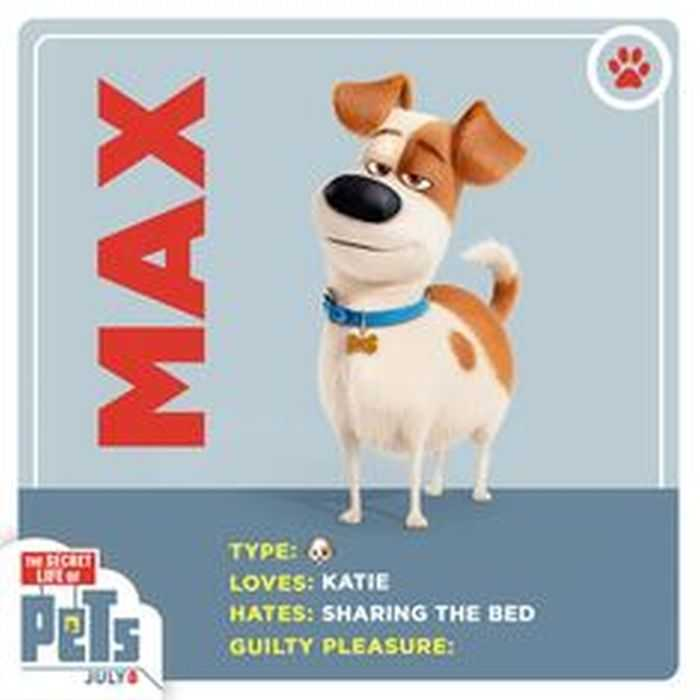 The Secret Life Of Pets - Funny Pictures And Quotes 010