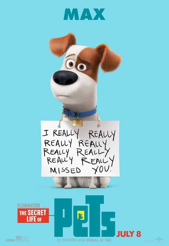 The Secret Life Of Pets - Funny Pictures And Quotes 011