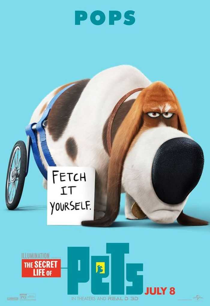 The Secret Life Of Pets - Funny Pictures And Quotes 018