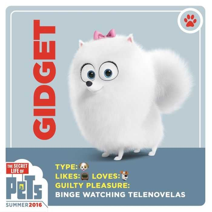 The Secret Life Of Pets - Funny Pictures And Quotes 020
