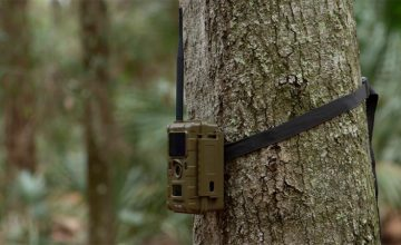 Someone Put A Bunch Of IEDs In Trail Cameras - ATF Has Issued A Warning featured