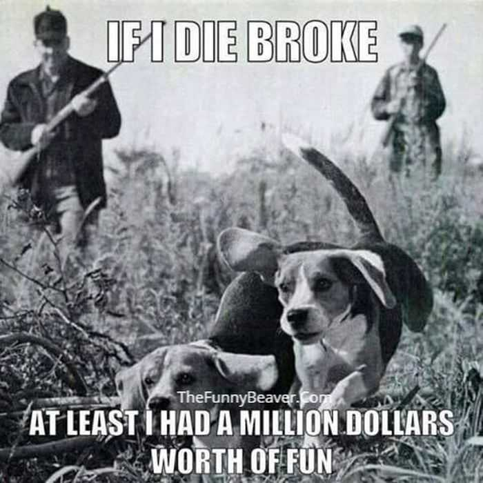 funny hunting and fishing pictures and memes 010