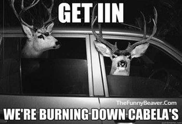 funny hunting and fishing pictures and memes 020