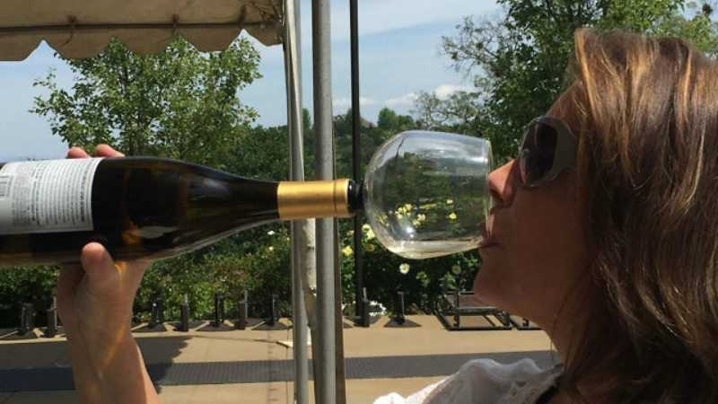 guzzle-buddy-turn-your-wine-bottle-into-a-huge-wine-glass-featured