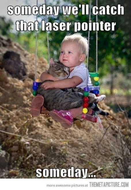 baby-holding-a-cat-on-the-swing
