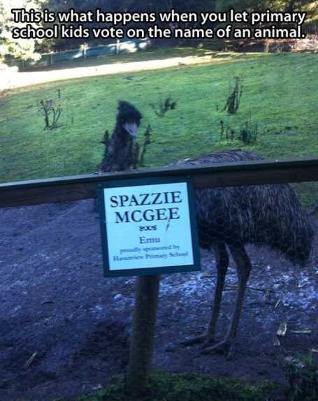 when-kids-pick-the-name-of-animals