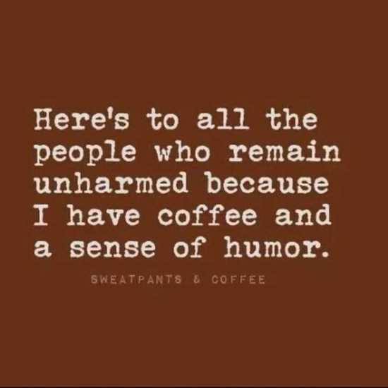 hilarious-quotes-and-sayings-005