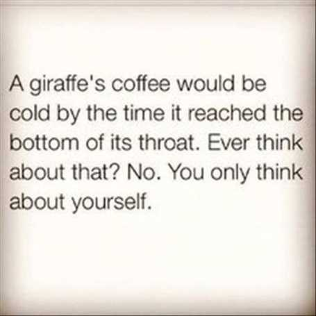 a-giraffes-coffee