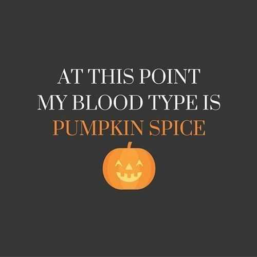 my-blood-type-is-pumpkin-spice 37 Funny Pictures That Will Make You laugh.