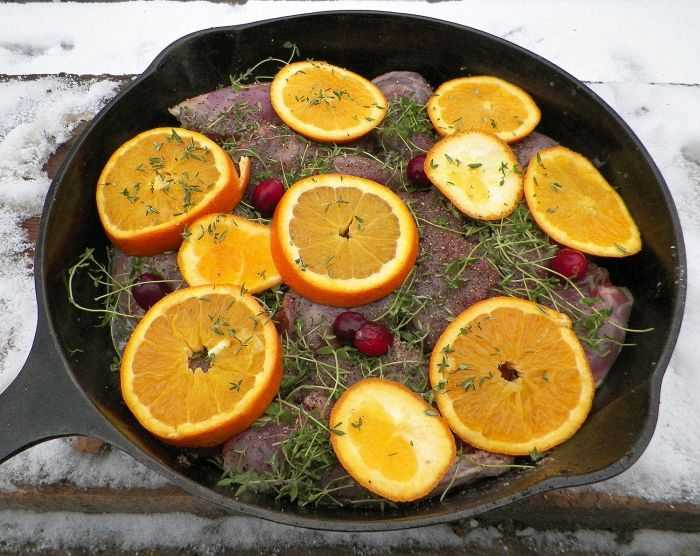 squirrel-in-skillet-oranges