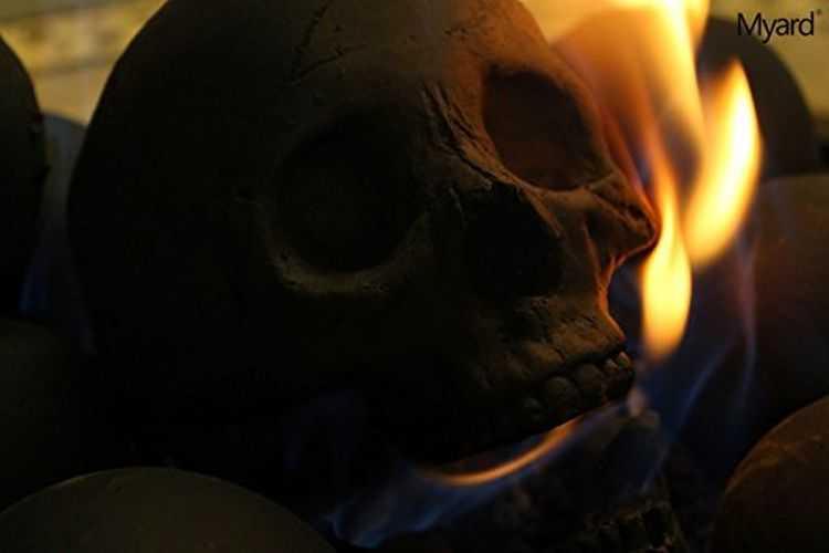 Myard Deluxe Human Skull Gas Logs 3004