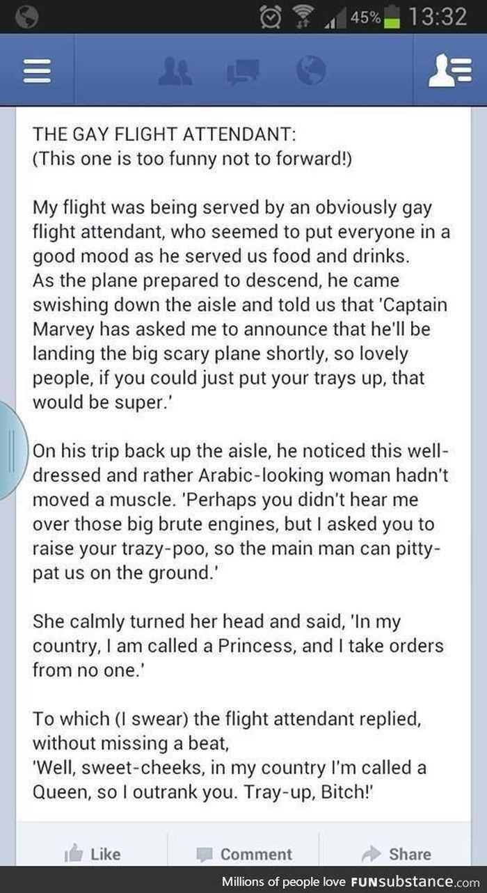 Short Story Hilarious one about a gay flight attendant