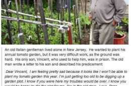 Funny Short Stories Of The Week 504