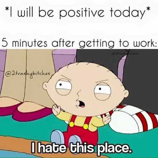stewie saying i hate this place with caption 5 minutes after getting to work meme