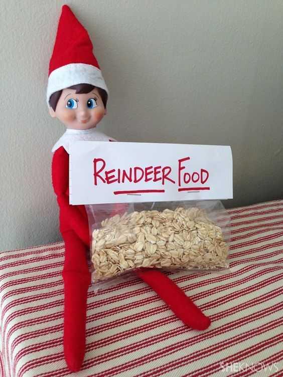 Elf On the Shelf cute - stealing muesli as reindeer food.