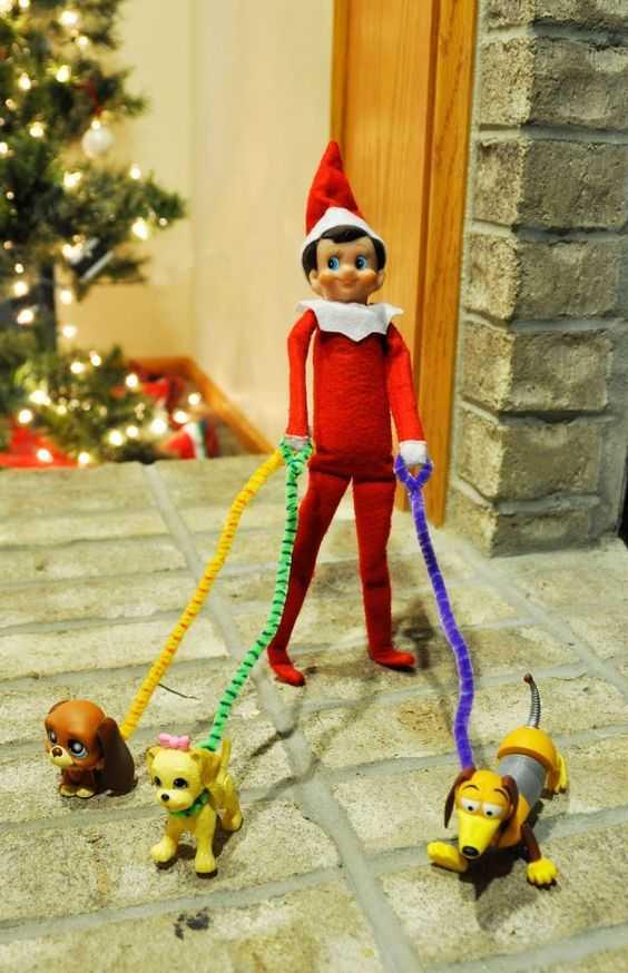 Elf On the Shelf funny - walking the dog meme