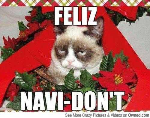 early christmas decorations meme - feliz?