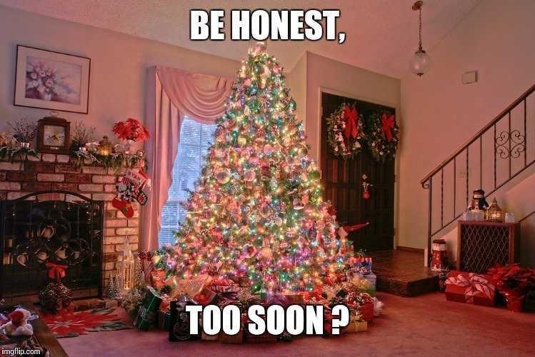 christmas too soon meme - early bird...