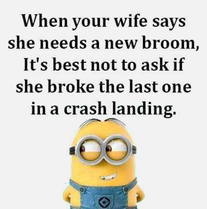 One of the funniest Minion quotes about not getting in trouble with the wife