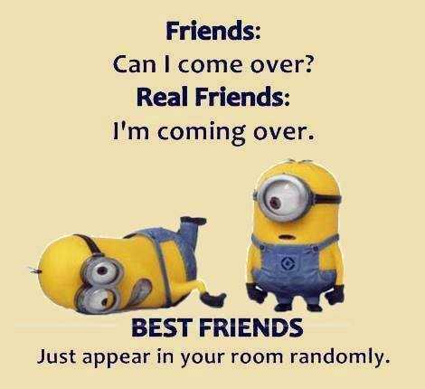 Minion Quote about different types of friends
