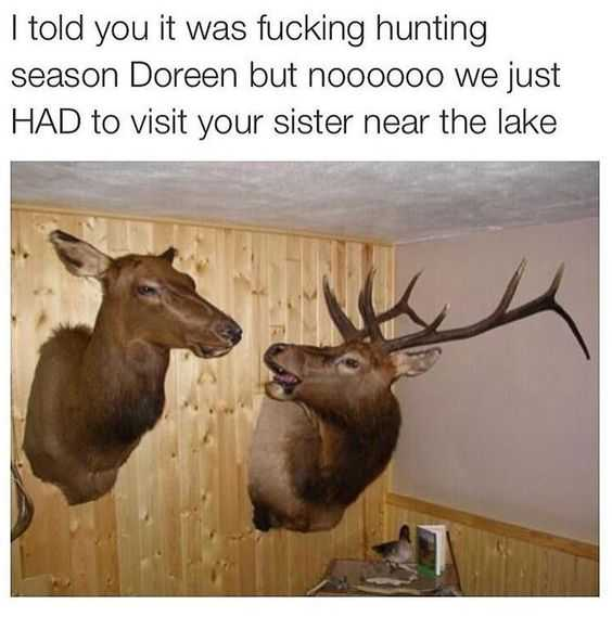 Funny Images of arguing deer heads