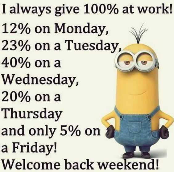 31 Funny Laugh-out-Loud Minions Pictures - 100% effort