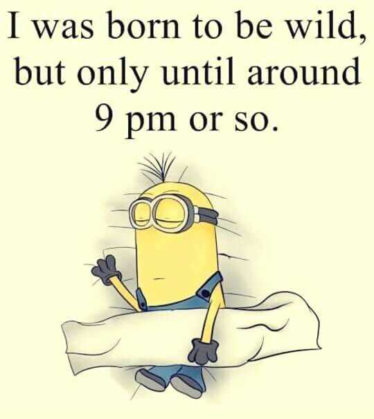 31 Funny Laugh-out-Loud Minions Pictures - wild till 9pm