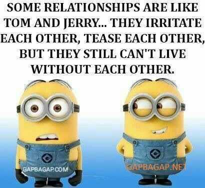 snarky quote about relationships from the minions