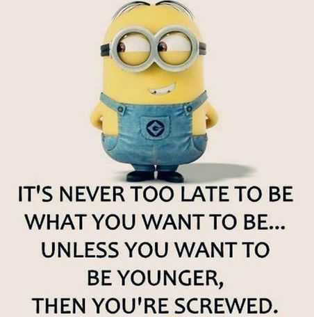 snarky minion quotes about aging
