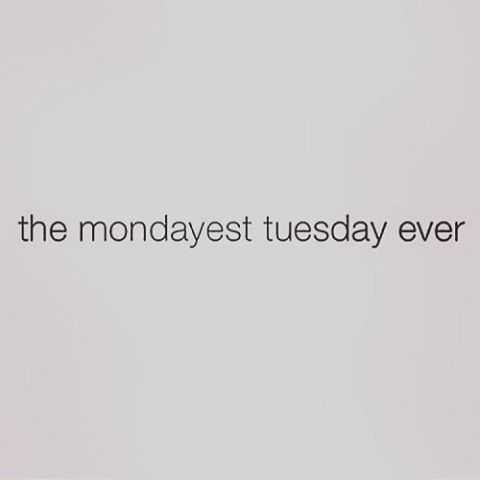 Funny quotes about Tuesdays