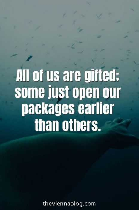 Motivational Quotes - everyone gifted