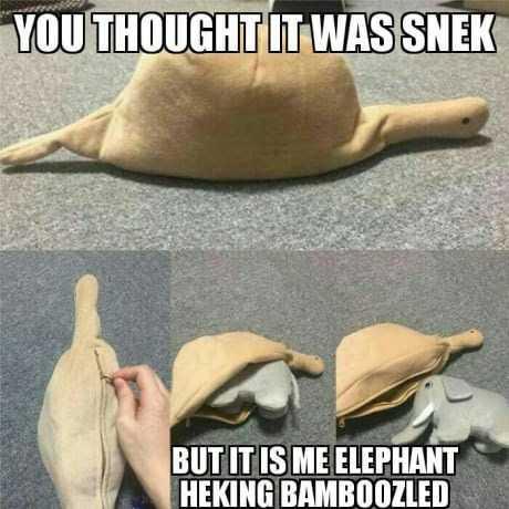 Funny Dank Memes - snek