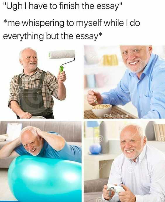 Funny Dank Memes - essay due