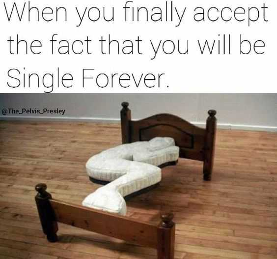 Memes about Single Life - stylish bed though!