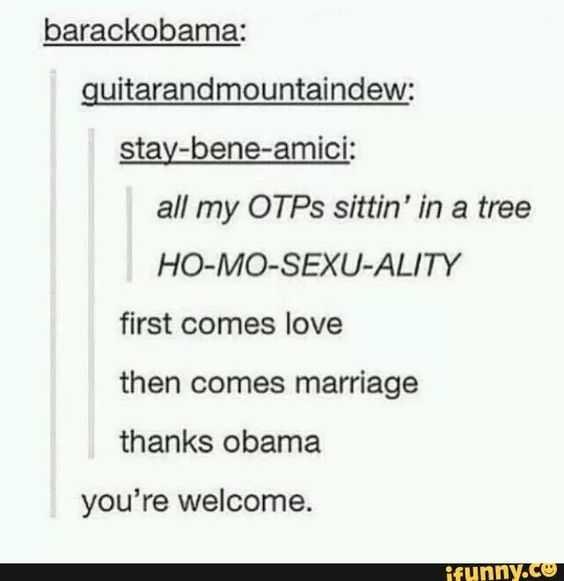 Funny Dank Memes - otps sittin' in a tree