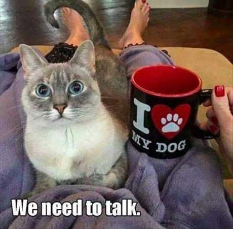 Funny Dank Memes - we need to talk look