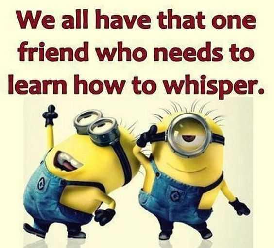 Hilarious Minion Memes - Loud Friend