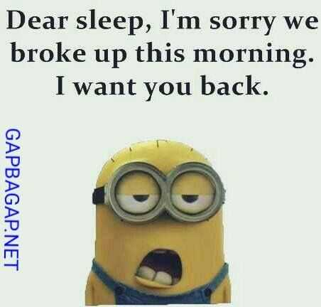 Minion Memes - Wanting Sleep Back