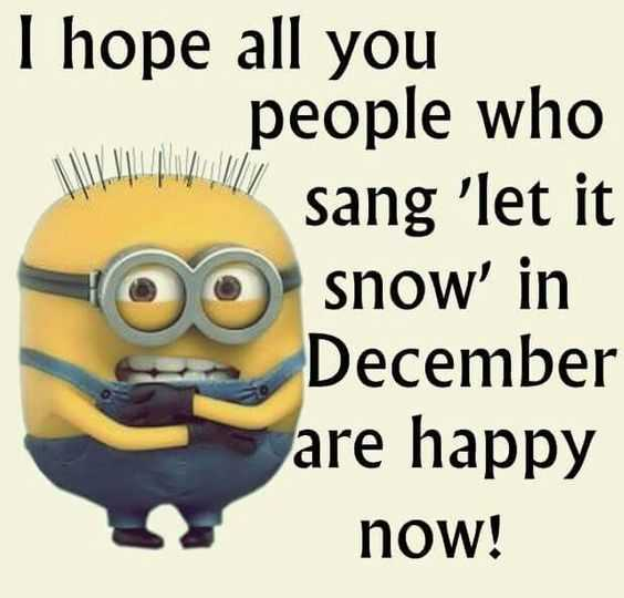 Minion Memes About Winter