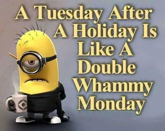 Funny Minion Memes About Monday Or Was It Tuesday