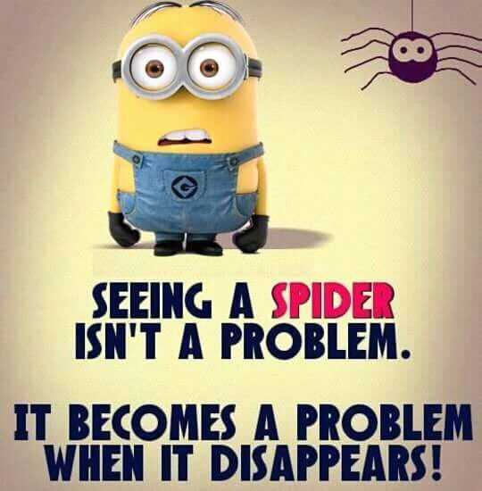 Funny Minion Memes - Spiders And Arachniphobia