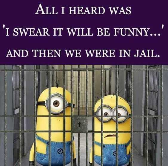 Funny Minion Memes - Seemed Like A Good Idea Short Story