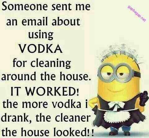 Minion Memes - Alcohol Is A Cleaning Solution